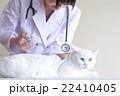 予防接種イメージ 22410405