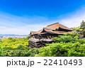 京都 世界遺産 清水寺 22410493