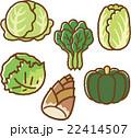 野菜イラスト素材セット2 22414507