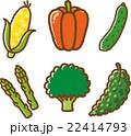 野菜イラスト素材セット1 22414793