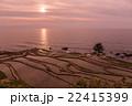 千枚田 棚田 夕日の写真 22415399