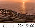 千枚田 棚田 夕日の写真 22415400