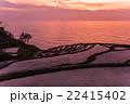 千枚田 棚田 夕日の写真 22415402