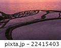 能登半島 輪島白米の千枚田の夕景 22415403