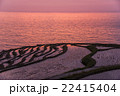千枚田 棚田 水田の写真 22415404