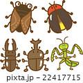 昆虫イラスト素材セット 22417715