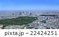 代々木公園と新宿方向/空撮 22424251