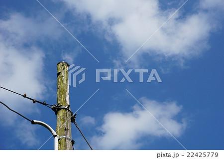 千葉県 木の電柱 いたぶ駅 22425779
