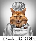 Cat Chef 22426934