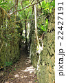 バリバリ岩 22427191