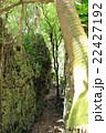 バリバリ岩 22427192