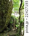 バリバリ岩 22427193