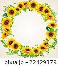 向日葵の夏らしい綺麗なフレーム 22429379
