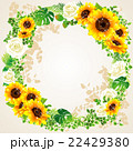 向日葵の夏らしい綺麗なフレーム 22429380