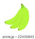 青バナナ 22430843