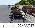 ふのり 海苔 海草の写真 22433747