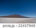 ボリビア チリ 風景の写真 22437948