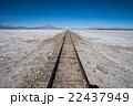 ボリビア チリ 風景の写真 22437949