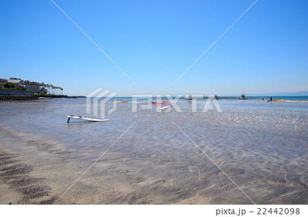 逗子マリーナと材木座の砂浜に置かれたウインドサーフィン 22442098