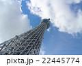 東京スカイツリーを見上げて 22445774