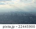 東京の街並み 22445900