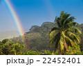 タヒチ島の虹 22452401