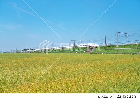 穀倉地帯を走る新幹線の写真素材 [22455258] - PIXTA