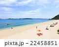 海 夏 ビーチの写真 22458851