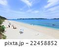 海 夏 ビーチの写真 22458852