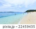 海 夏 ビーチの写真 22459435