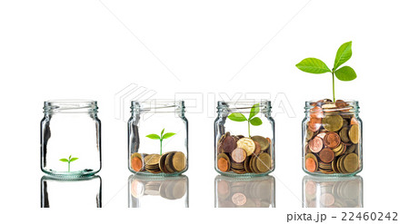 Gold coins and seed in clear bottle on white background,Business investment growth conceptの写真素材 [22460242] - PIXTA