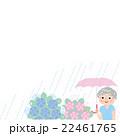 梅雨 あじさい シニア 22461765
