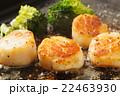 バター焼き 帆立貝 帆立の写真 22463930