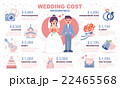 インフォグラフィック ウエディング カップルのイラスト 22465568