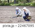 アスパラ農家 22467095