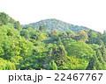 京都景色 22467767