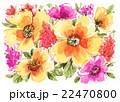 イラスト 花柄 水彩のイラスト 22470800