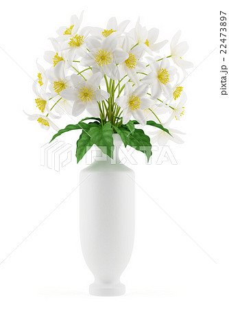 flowers in vase isolated on white backgroundのイラスト素材 22473897