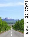 一本道 富良野 道の写真 22477978