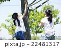屋外で遊ぶ小学生 22481317