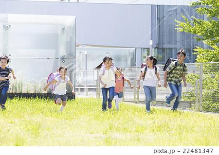 屋外の小学生 22481347