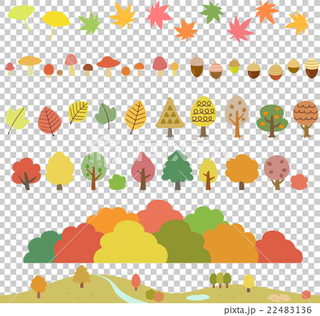 autumn, autumnal, maple 22483136