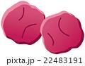 梅干し 漬け物 漬物のイラスト 22483191