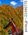 宇奈月トロッコ列車 22490776
