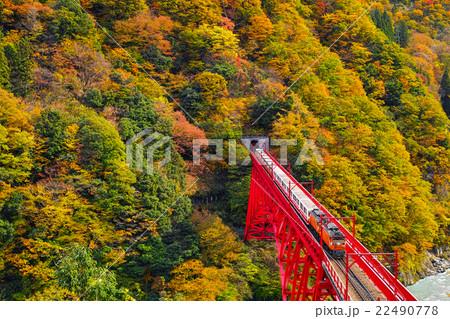 宇奈月トロッコ列車 22490778