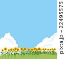 ひまわり畑 ひまわり ベクターのイラスト 22495575