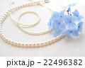 真珠と紫陽花 22496382