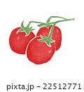 トマト プチトマト 野菜のイラスト 22512771