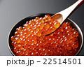 いくら いくら丼 魚卵の写真 22514501