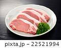 豚ロース 22521994